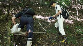 【サントリー天然水の森シリーズ】第3章 生態系と水循環は土壌で成り立っている 過疎化が進み浸食や土壌崩壊の危険が増す日本の森林